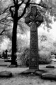 Graceland Cemetery, Chicago, IL